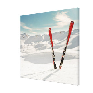 Red Skis Canvas Print