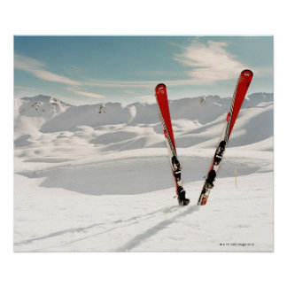 Red Skis Poster