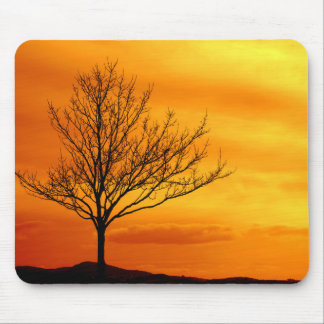 Red Sky Mousemats