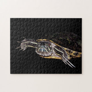 Red Slider Turtle Jigsaw Puzzle