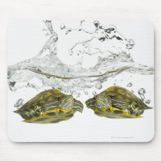 Red slider turtles mouse pad