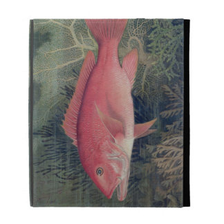 Red Snapper, from 'Game Fishes of the United State iPad Case