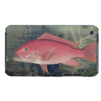 Red Snapper, from 'Game Fishes of the United State iPod Case-Mate Case