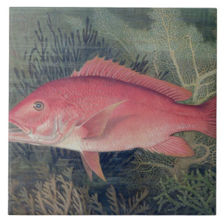 Red Snapper, from 'Game Fishes of the United State Tile