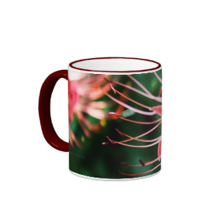Red Spider Lily Mugs
