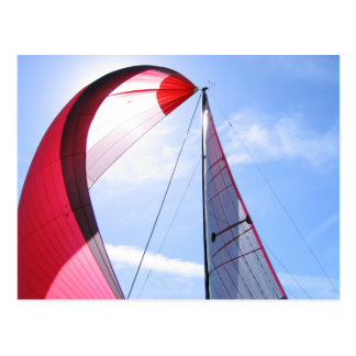 Red Spinnaker With Sun Postcard