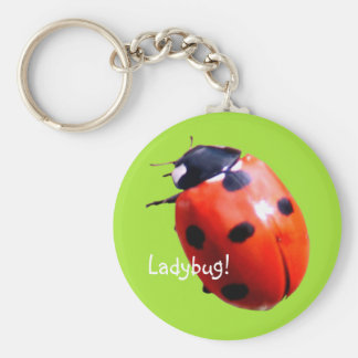 Red Spotted Ladybug Key Ring