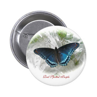Red Spotted Purple Butterfly Button Badge