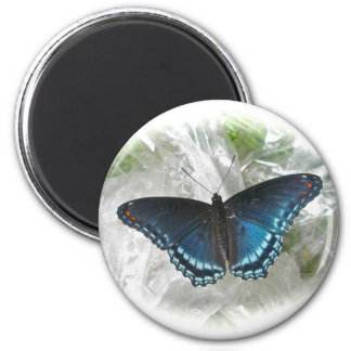 Red Spotted Purple Butterfly Magnet