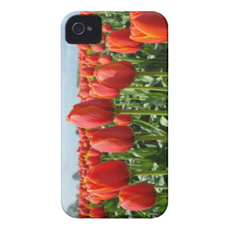 Red spring tulips iphone 4 cover