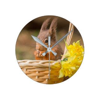 Red squirrel clock
