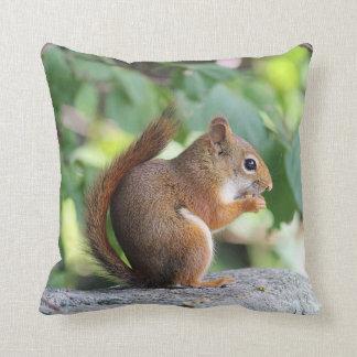Red squirrel cushion