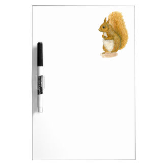 Red Squirrel Dry Erase Board