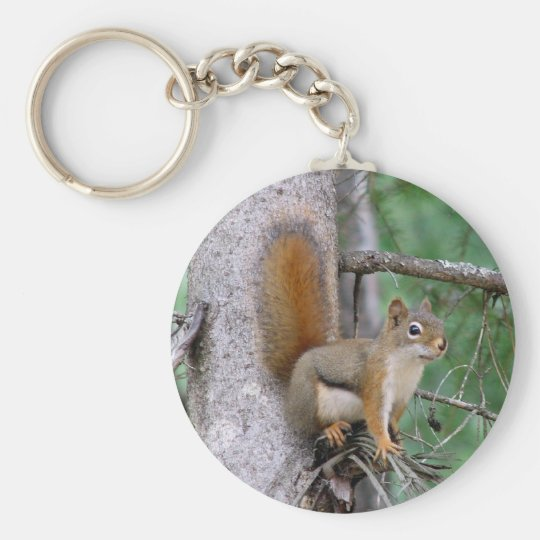 Red Squirrel II Keychain