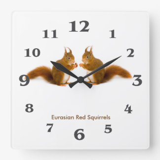 Red squirrel image for Acrylic Wall Clock