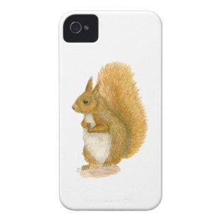 Red Squirrel iPhone 4 Case