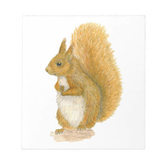 Red Squirrel Notepad