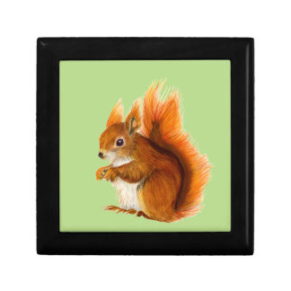 Red Squirrel Painted in Watercolor Wildlife Art Gift Box