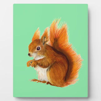 Red Squirrel Painted in Watercolor Wildlife Art Plaque