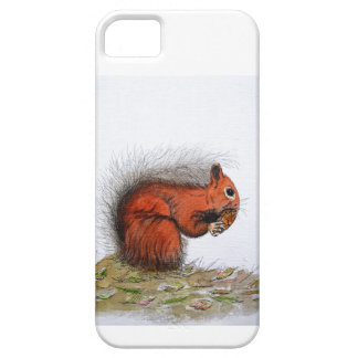 Red Squirrel pine cone Barely There iPhone 5 Case