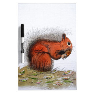 Red Squirrel pine cone Dry Erase Board