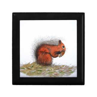 Red Squirrel pine cone Gift Box