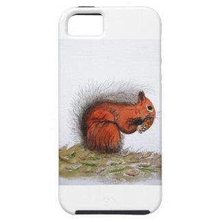 Red Squirrel pine cone iPhone 5 Case