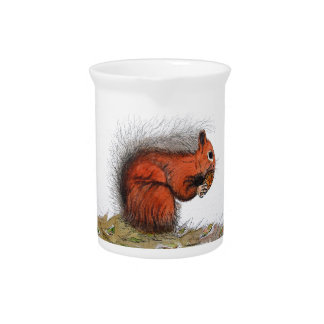 Red Squirrel pine cone Pitcher