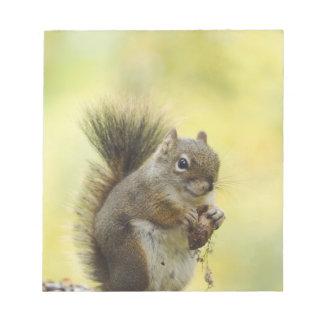Red Squirrel, Pine Squirrel, Tamiasciurus Notepad