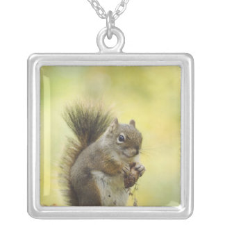 Red Squirrel, Pine Squirrel, Tamiasciurus Silver Plated Necklace