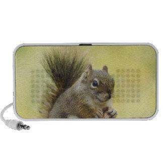 Red Squirrel, Pine Squirrel, Tamiasciurus Portable Speaker