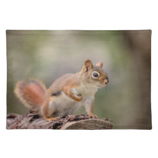 Red Squirrel Placemat