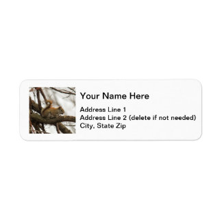 Red Squirrel Return Address Label