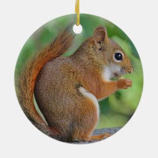 Red squirrel round ceramic decoration