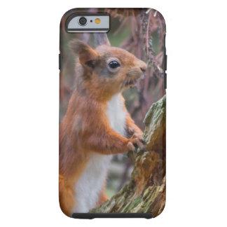 Red Squirrel Tough iPhone 6 Case