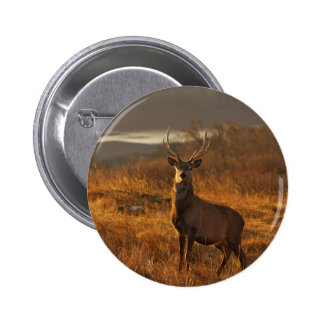 Red Stag Button Badge