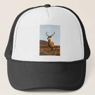 Red Stag Hat