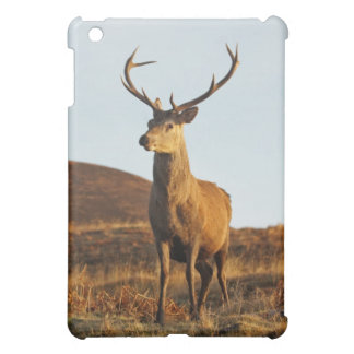 Red Stag iPad Case