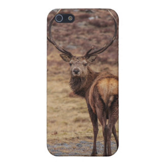 Red Stag  iPhone 5 Matte Finish Case