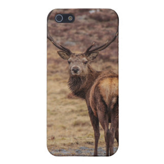 Red Stag  iPhone 5 Matte Finish Case iPhone 5 Case