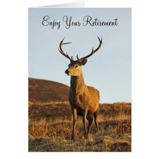 Red Stag Retirement Card Greeting Card