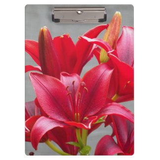Red Stargazer Lilies Floral Clipboard