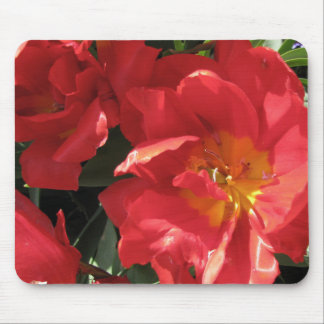 Red Sun Petals Mouse Pad
