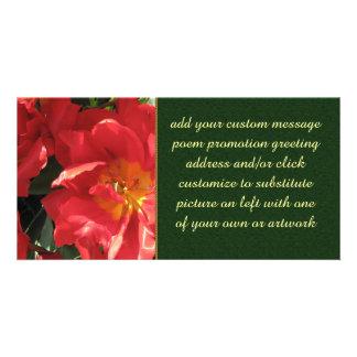 Red Sun Petals Photo Cards
