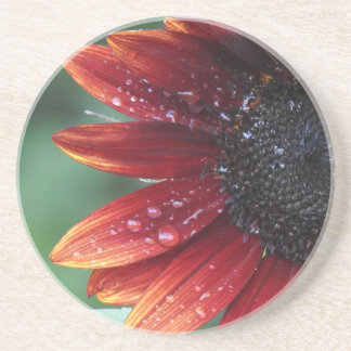 Red Sunflower Petals And Rain Drops Coaster