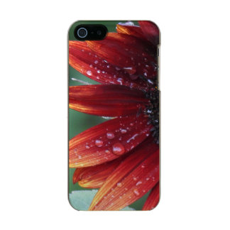 Red Sunflower Petals And Rain Drops Incipio Feather® Shine iPhone 5 Case
