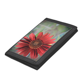 Red Sunflower Tri-fold Wallet