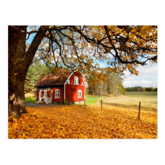 Red Swedish House Amongst Autumn Leaves Postcard