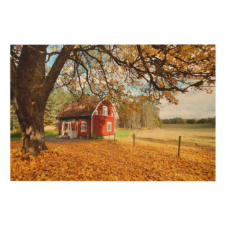 Red Swedish House Amongst Autumn Leaves Wood Print