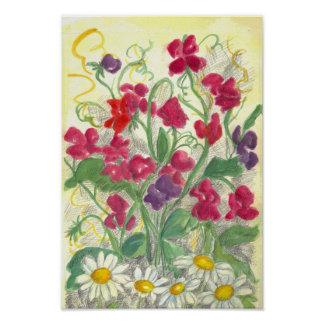 Red Sweet Pea Daisy Watercolor Garden Drawing Poster